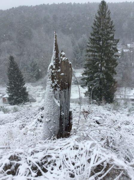 Das Gespür für Schnee – Wege zur Inspiration